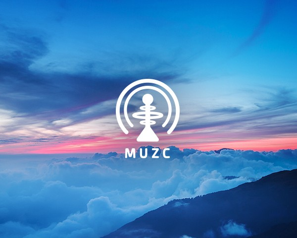 MUZC ::  A Customizable Music Experience Application